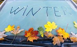 Primeiros testes padrões do tempo de inverno Imagem de Stock Royalty Free
