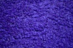 Primer alfombrado púrpura Fotos de archivo