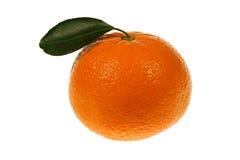 Primer anaranjado de la mandarina aislado Fotografía de archivo