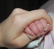 Primer apretón del bebé Foto de archivo libre de regalías