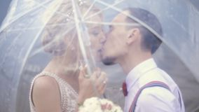 Primer, beso hermoso joven de los recienes casados debajo de un paraguas transparente D?a asoleado del resorte boda metrajes