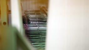 Primer, cinta del transporte en la producción de empaquetado Cadena de producción rodillo del transportador, acero de los rodil almacen de video