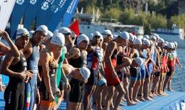Primer, competidores masculinos de la natación que esperan la señal de salida Imagenes de archivo