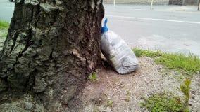 Primer con un envase de plástico cerca del árbol fotos de archivo