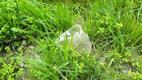 Primer con una taza plástica en la hierba verde fotografía de archivo