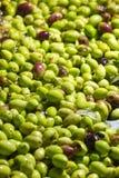 Primer de aceitunas en una máquina del aceite de oliva Imágenes de archivo libres de regalías
