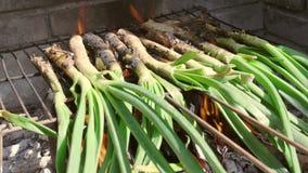 Primer de algunos calcots, cebollas dulces típicas de Cataluña, siendo cocinado en una barbacoa metrajes