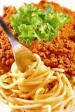 Primer de boloñés del espagueti Imagen de archivo