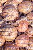 Primer de bolsos de cebollas en redes fotografía de archivo libre de regalías