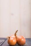 Primer de cebollas maduras orgánicas Imagenes de archivo