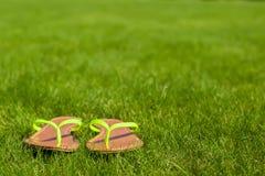 Primer de chancletas brillantes en hierba verde Imágenes de archivo libres de regalías