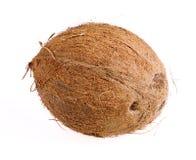 Primer de Cocnut en blanco Imagenes de archivo