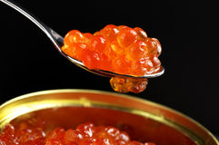 Primer de color salmón del caviar Fotos de archivo libres de regalías