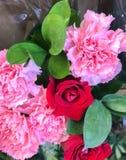 Primer de flores Imagen de archivo libre de regalías