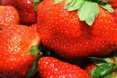 Primer de fresas Imagen de archivo libre de regalías