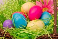 Primer de huevos coloreados en la cesta de Pascua fotografía de archivo libre de regalías