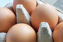Primer de huevos marrones frescos en un cartón gris del huevo Fotografía de archivo libre de regalías
