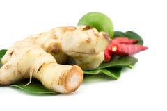 Primer de ingredientes tailandeses fotos de archivo