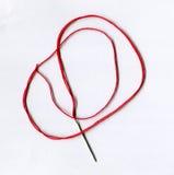 Primer de la aguja de bordado con el hilo tortile Foto de archivo libre de regalías