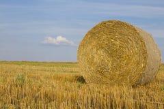 Primer de la bala de la paja del trigo Imagenes de archivo