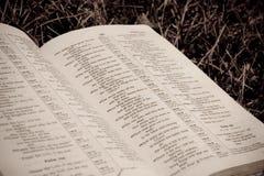 Primer de la biblia en la hierba Fotografía de archivo