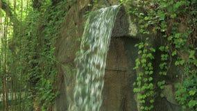 Primer de la cámara lenta de una pequeña cascada en un bosque profundo el día soleado almacen de metraje de vídeo