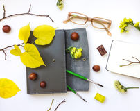 Primer de la caja, del cuaderno y de los vidrios de cuero de la pluma en el fondo blanco Decoración del otoño Visión superior, en Imagenes de archivo