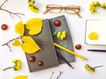 Primer de la caja, del cuaderno y de los vidrios de cuero de la pluma en el fondo blanco Decoración del otoño Visión superior, en Fotos de archivo