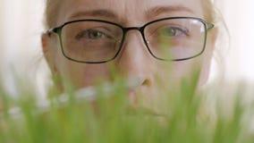 Primer de la cara de una mujer con los vidrios, considerando los troncos crecientes de una planta verde almacen de metraje de vídeo