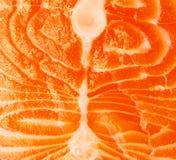 Primer de la carne de color salmón Imagen de archivo libre de regalías