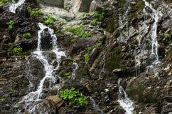 Primer de la cascada Foto de archivo libre de regalías
