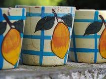 Primer de la cerámica pintado con los melocotones imagen de archivo libre de regalías