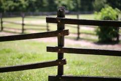 Primer de la cerca vieja del corral en la granja Foto de archivo