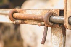 Primer de la cerradura de un prado Imagenes de archivo