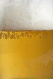 Primer de la cerveza Foto de archivo libre de regalías