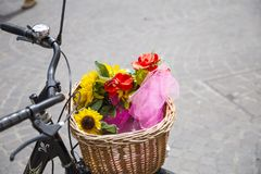 Primer de la cesta de mimbre de la bicicleta fotografía de archivo