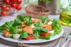 Primer de la ensalada hecha en casa con los salmones y las verduras Imágenes de archivo libres de regalías