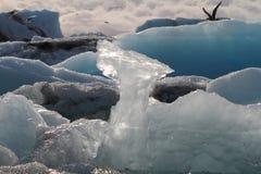 Primer de la formación de hielo Fotografía de archivo libre de regalías
