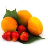 Primer de la fruta fresca Imagen de archivo