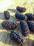 Primer de la fruta madura de las moras negras en fondo de madera Copie el espacio Fondo de la baya imagenes de archivo