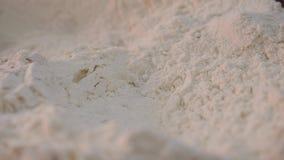 Primer de la harina blanca desmenuzable Cantidad com?n La harina pura blanca se filtra antes de usar en la preparación que cuece  almacen de metraje de vídeo