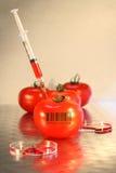 Primer de la jeringuilla en tomate Foto de archivo libre de regalías