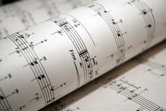Primer de la música de hoja Foto de archivo libre de regalías