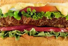 Primer de la macro del cheeseburger Imágenes de archivo libres de regalías