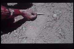 Primer de la mano con el palillo que examina huella grande en suciedad metrajes