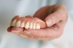 Primer de la mano de la mujer que sostiene una dentadura de los dientes foto de archivo