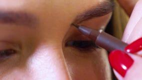 Primer de la mano femenina del artista de maquillaje que hace la corrección de la forma de la ceja al modelo femenino en el salón almacen de metraje de vídeo