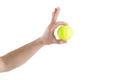 Primer de la mano masculina que sostiene la pelota de tenis en el fondo blanco imagenes de archivo