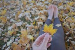 Primer de la mano que sostiene la hoja del otoño Imágenes de archivo libres de regalías