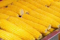 Primer de la mazorca de maíz - cocinado, maíz amarillo en venta imagen de archivo